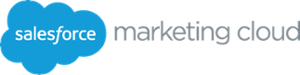 salesforce-logo-2-1